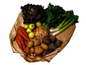 8 kg økologisk frugt og grønt for en hund.