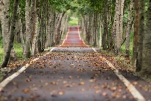 walk and talk clairvoyance